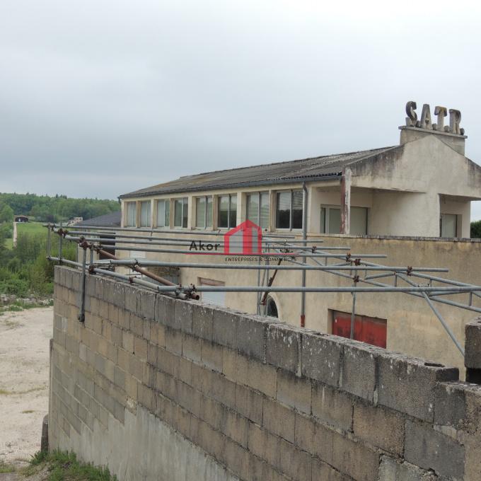 Vente Immobilier Professionnel Local d'activité Saint-Georges-sur-Baulche (89000)